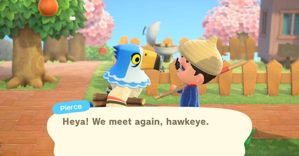 Who Are The Rarest Villagers In Animal Crossing New Horizons