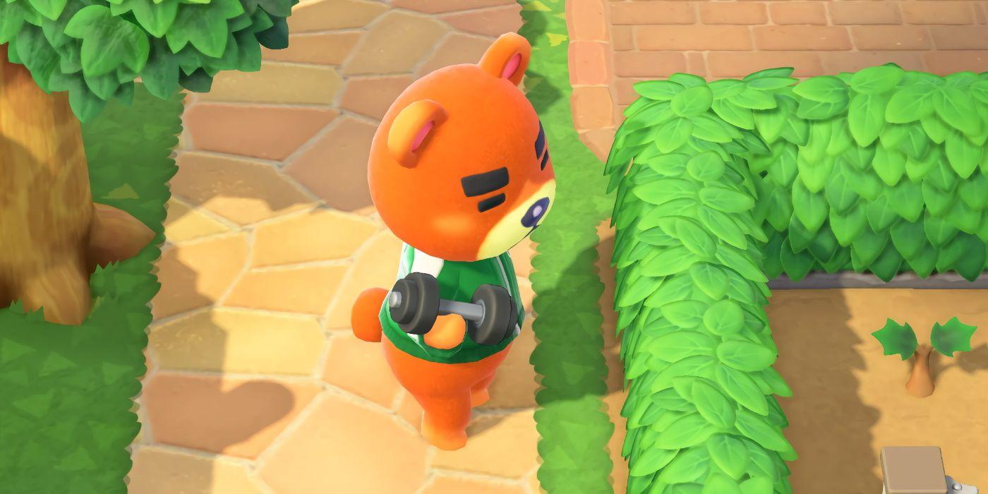 The Best Jocks In Animal Crossing New Horizons Game Rant
