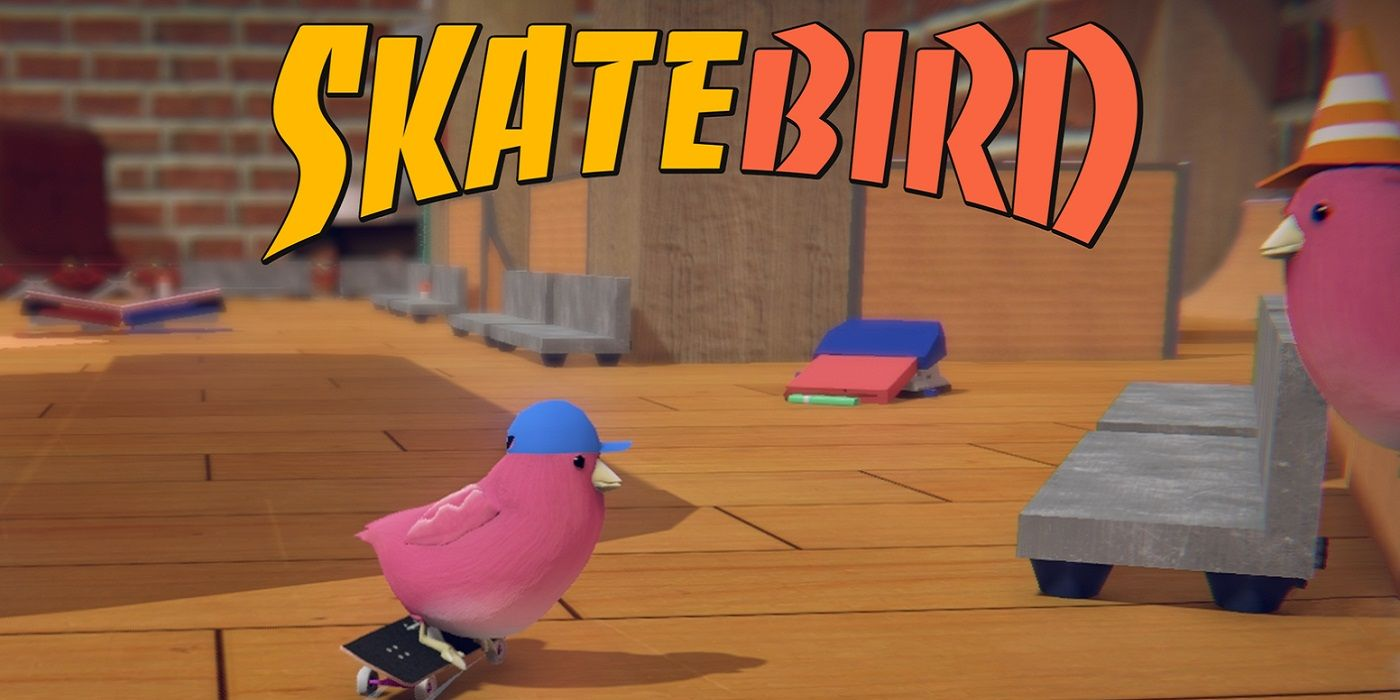 Skatebird Release Date Delay Announced With Apology Video