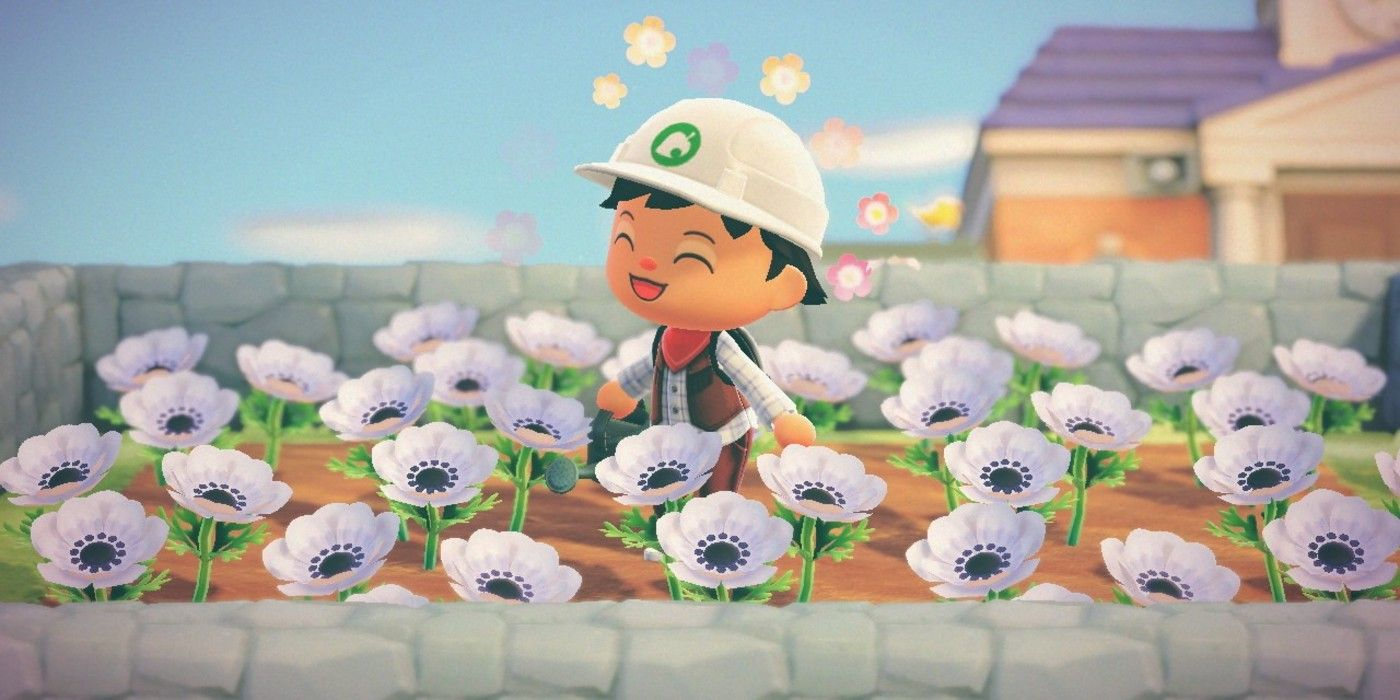 Animal Crossing New Horizons Custom Path Trick Stops Flowers From Spreading
