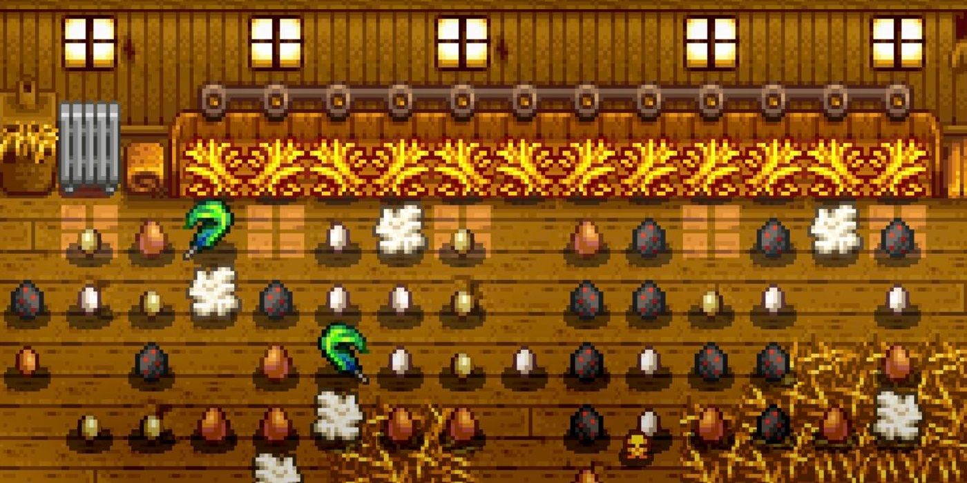 Feed Chickens in Stardew Valley