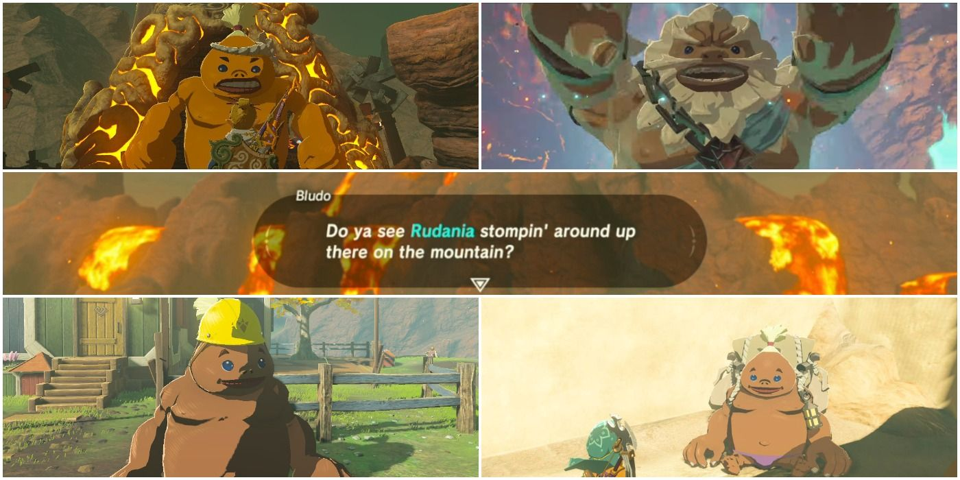 Breath Of The Wild: 7 Things You Didn't Know About The Goron