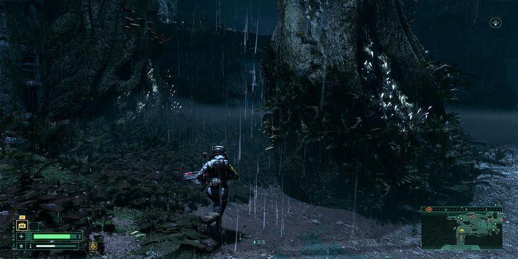 Селена бежит по лесу