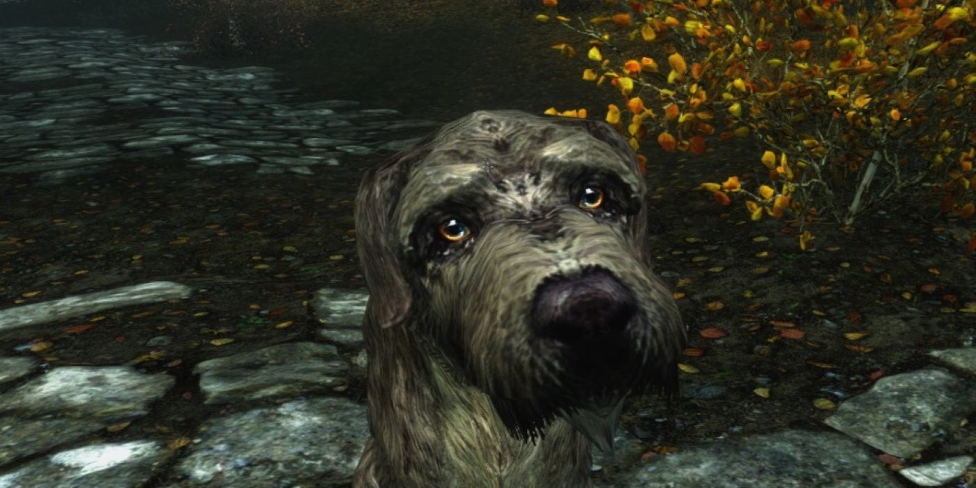 Skyrim Mod Allows Players to Pet Dogs | Game Rant